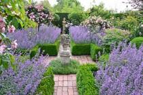 Bilder Schöne Gärten bilder aus schönen gärten